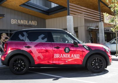 brandland mini